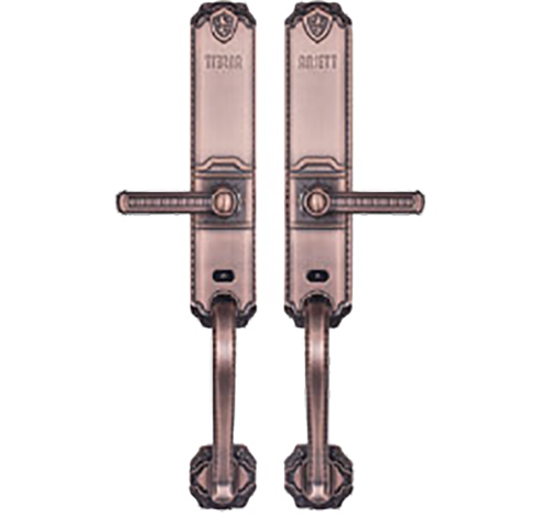 S-110豪华指纹锁 (费用另计)